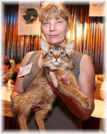 Best in Show Kitten + Sonderpreis
